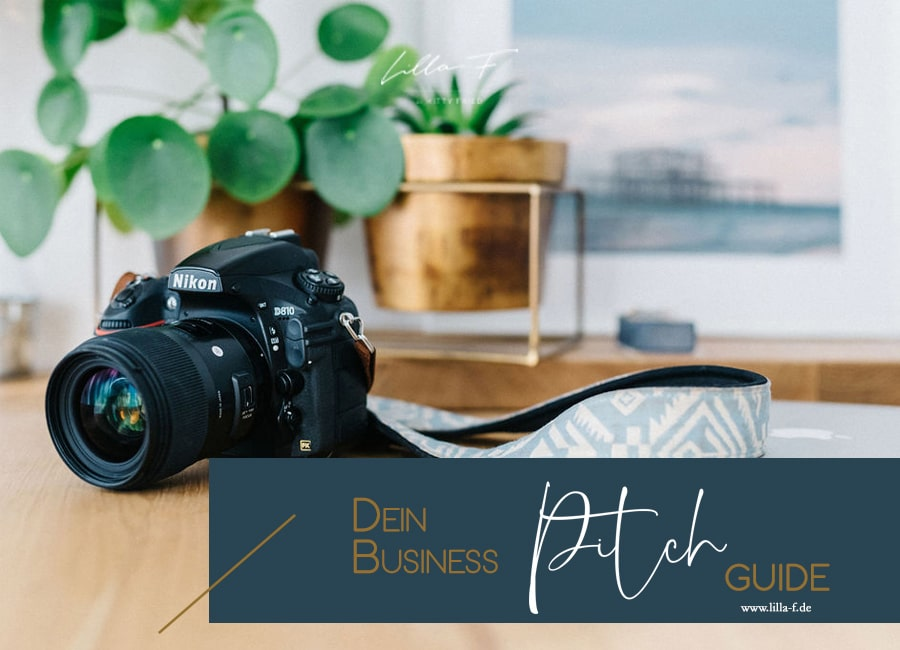 Business Pitch Guide Lilla F